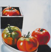 382-Tomatoes-20_x20_-2013-oil-on-canvas-e1431558754677