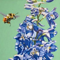383-Delphinium-and-Bee-20_x20_-2013-oil-on-canvas-e1431558715801