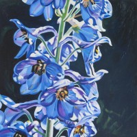 #389 Delphinium 20_x20_ 2013 oil on canvas