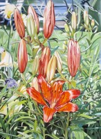 397-Lilies-at-the-Land-38_x28_-2014-oil-on-canvas