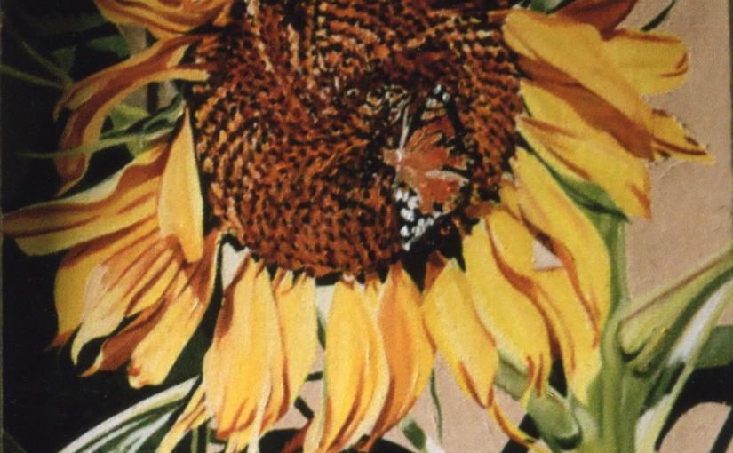sunflowers. img060